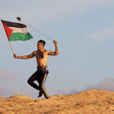 Mueren 6 palestinos en enfrentamiento con fuerzas israelíes en Gaza