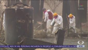 Suman más de 70 muertos en California por incendios forestales