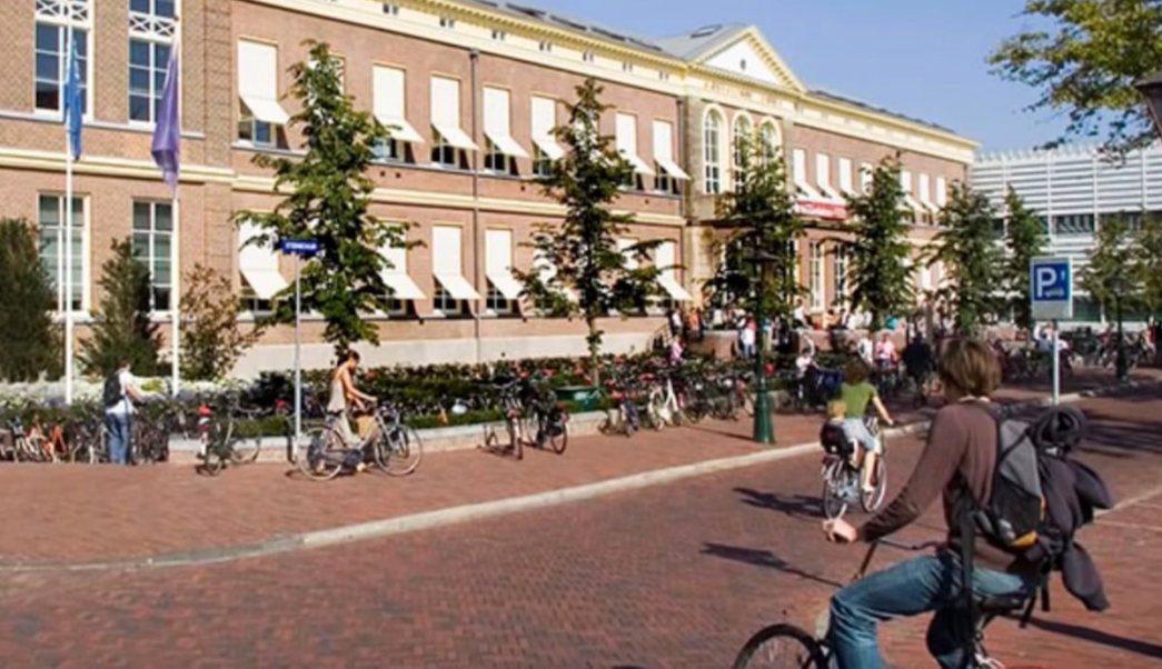 Abren Convocatoria Becas Holanda Requisitos Programas