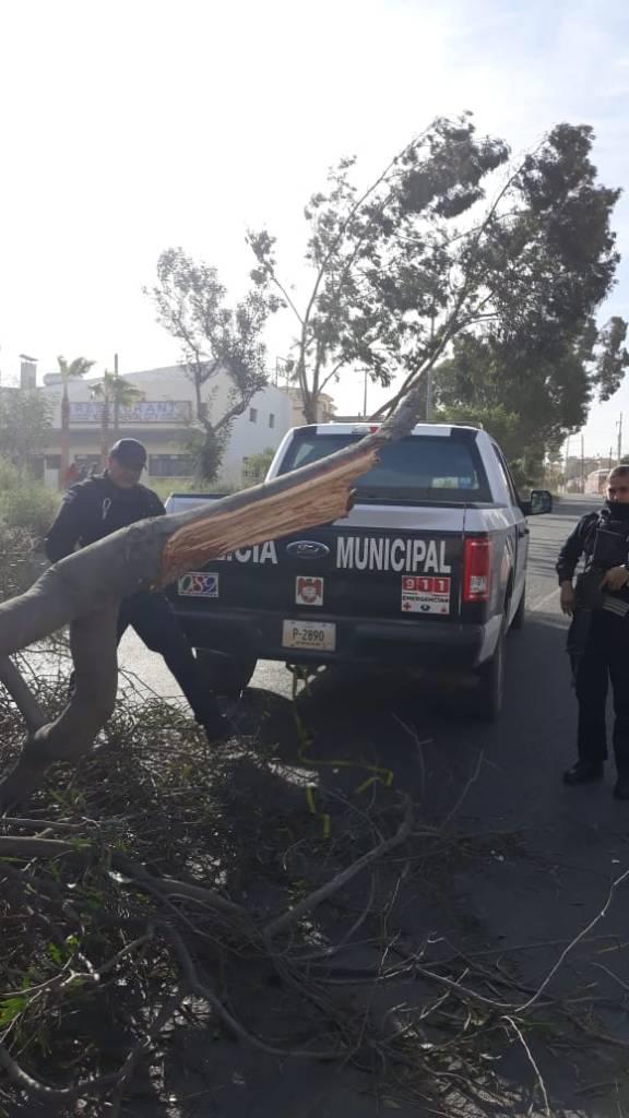 Vientos de Santa Ana en Tijuana