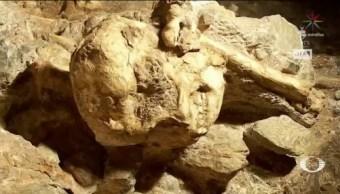 Antropólogos Concluyen Estudios A Pie Pequeño