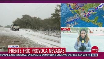 Continúan las nevadas en Sonora