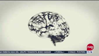 La memoria, un mecanismo complejo
