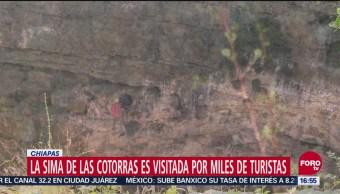 La sima de las Cotorras es visitada por miles de turistas en Chiapas