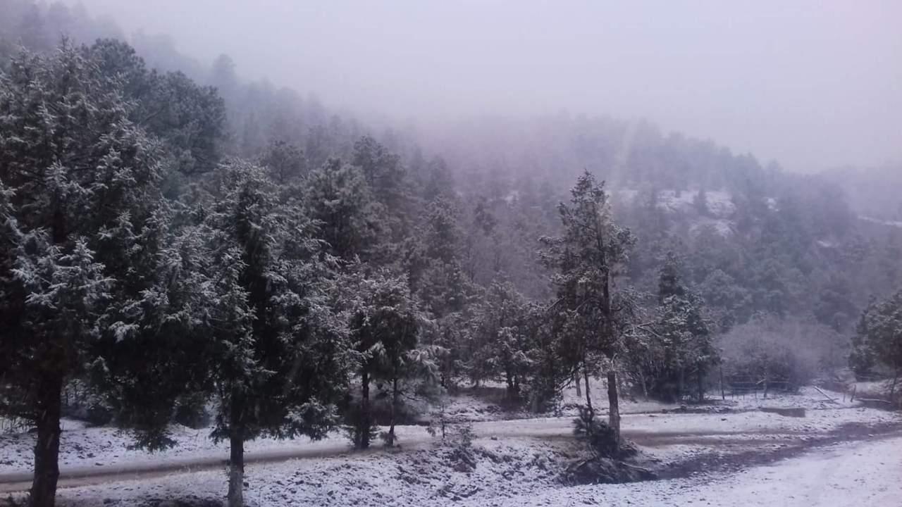 Foto: Frente frío 35 provocará nevadas en Sonora, el 6 de febrero 2019