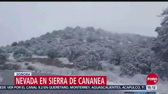 Nevada En Sierra De Cananea Sonora
