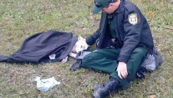 Policía cubre abrigo perra atropellada viral