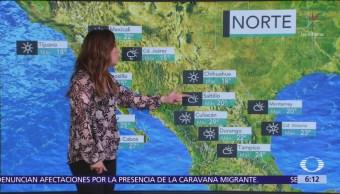 Pronostican ambiente gélido en norte y noroeste de la República Mexicana