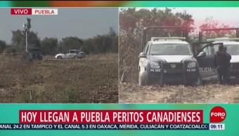 Puebla espera llegada de peritos canadienses