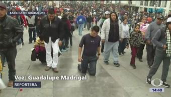 Se esperan más peregrinos en la Basílica de Guadalupe
