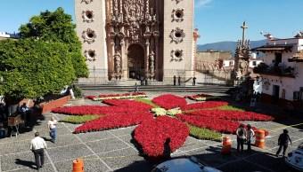 Taxco inaugura flor de noche buena más grande del mundo