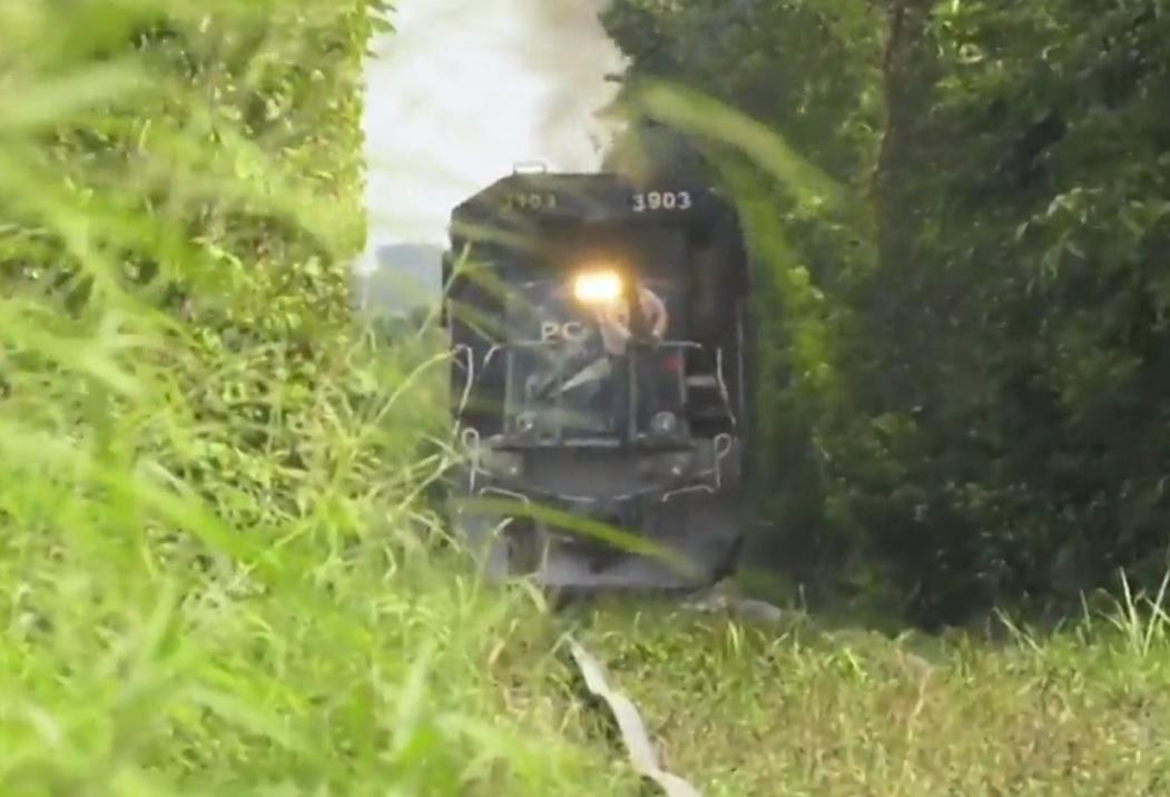 Tren Maya: Preocupa a ejidatarios su paso por la biosfera de Calakmul