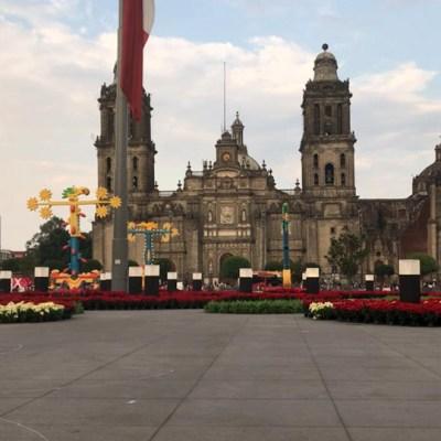 Zócalo estrena jardín de nochebuenas como en los años 40