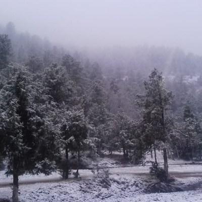 Se mantiene potencial para caída de nieve en norte y noroeste de México