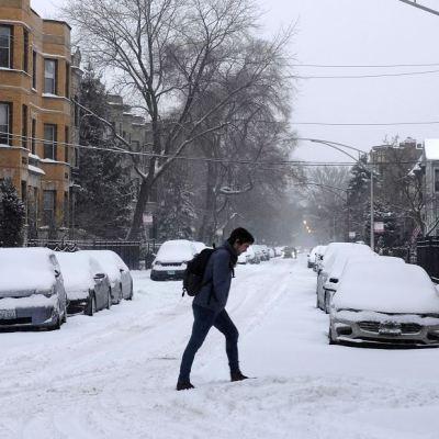 Chicago podría registrar temperaturas más bajas que el Everest y la Antártida
