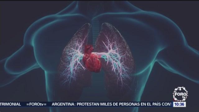 Hallan cepa de bacteria que ayudaría a evitar muertes