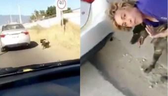Video: mujer amarra a perra y la arrastra con su auto