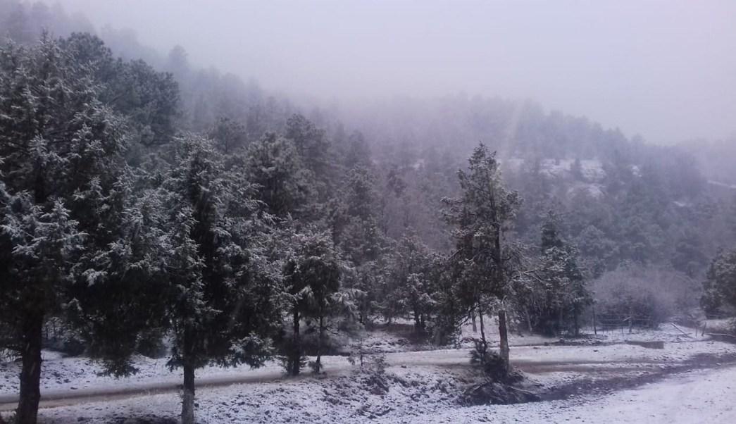 Persisten bajas temperaturas en gran parte de México