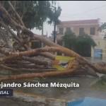 Turbonada afecta a Yucatán