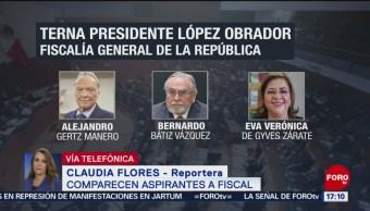 Verónica de Gyves Zárate, segunda aspirante a fiscal con senadores