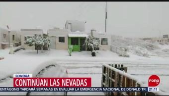 Foto: Bajas Temperaturas Nevadas Nogales Sonora 22 de Febrero 2019