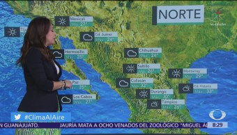 Clima Al Aire: Prevén temperaturas superiores a los 40 grados en México