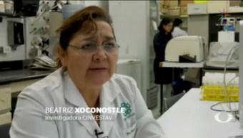 FOTO: Cuestionan despido de investigadora del Conacyt por transgénicos, 13 FEBRERO 2019