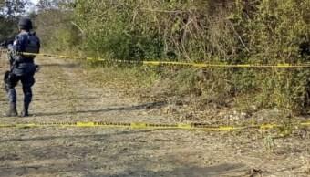 Foto: fosas clandestinas en Tecomán, Colima, 9 de febrero 2019. Twitter @Diario_deColima