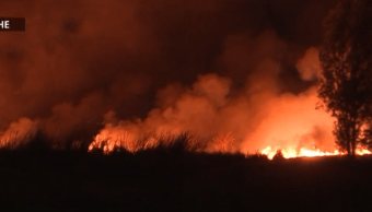 Foto: Fuego consume hectáreas de pastizales en Xochimilco, 20 de febrero de 2019, Ciudad de México