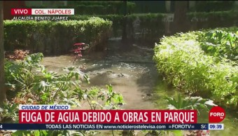FOTO: Fuga de agua en parque de la colonia Nápoles, 4 febrero 2019