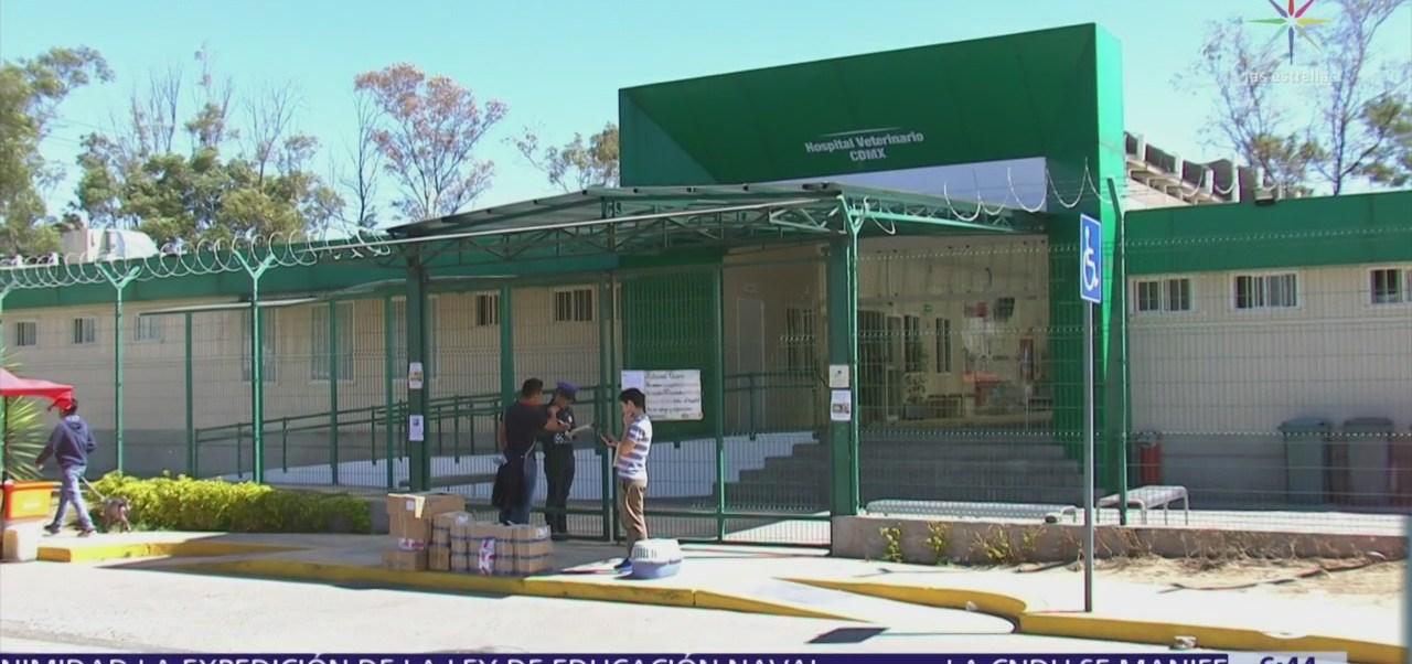 Hospital Veterinario de la CDMX regulariza servicios