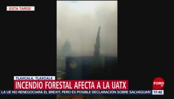 Foto: Incendio forestal afecta la Universidad de Tlaxcala