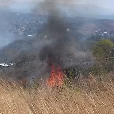 Incendio consume 12 hectáreas muy cerca del Cañón del Sumidero