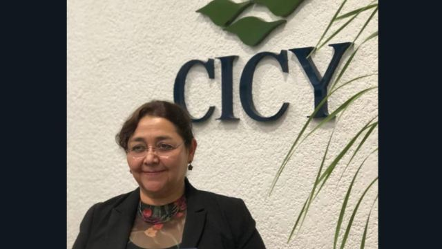 piden renuncia investigadora Conacyt por indagatoria de funcion publica