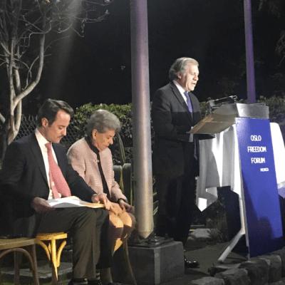 OEA sostiene que Venezuela tiene gobierno ilegítimo