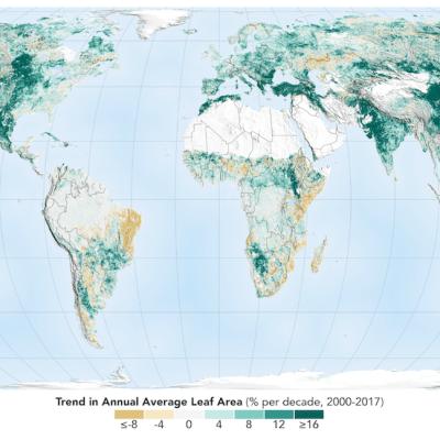 La Tierra es más verde que hace 20 años, afirma la NASA