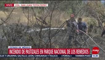 Foto: Se registra incendio en Parque Nacional de los Remedios