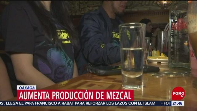 Aumenta producción del Mezcal en Oaxaca