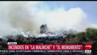FOTO:Bomberos luchan por combatir incendios forestales en Puebla, 9 marzo 2019