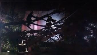 Foto:Cae árbol y causa serios daños en la colonia Florida, CDMX, 6 marzo 2019