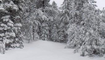 Foto: Se registra una nevada en el área de protección de flora y fauna Campo Verde, Chihuahua, marzo 16 de 2019 (Twitter: @CONANP_mx)