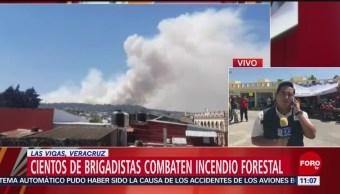 Cientos de brigadistas combaten incendio forestal en Las Vigas, Veracruz