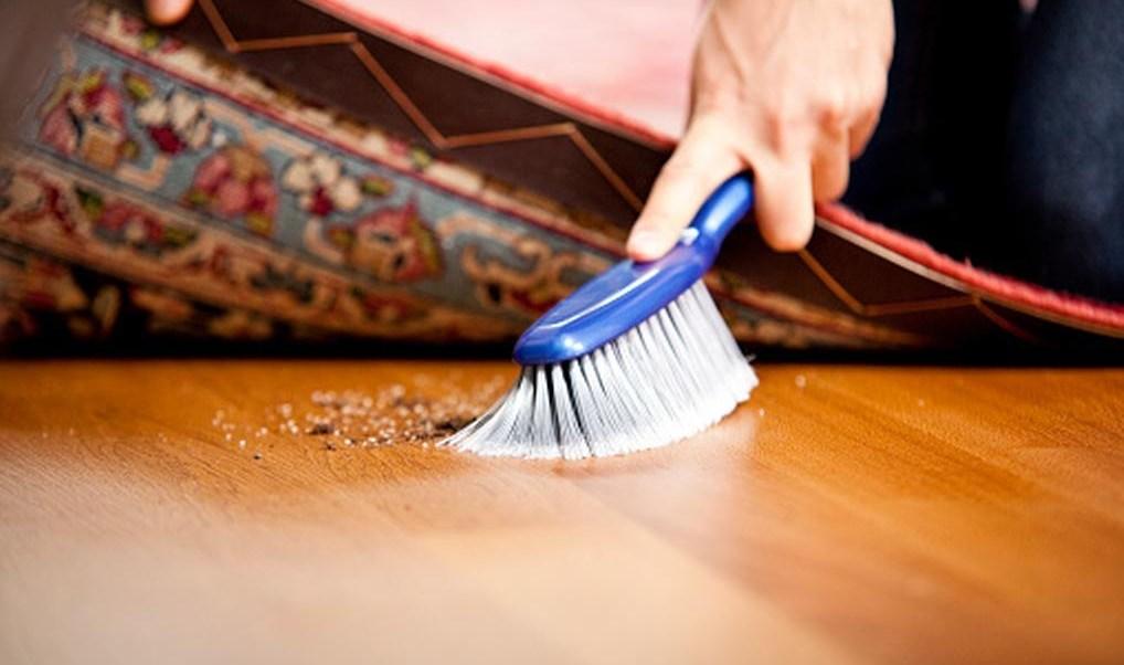 foto El polvo de tu casa podría hacerte engordar