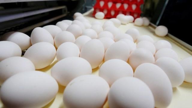 Foto: El huevo permanece como el producto con el precio más elevado en México, marzo 4 de 2019 (Getty Images)