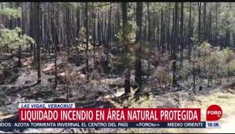 Foto: Incendio en Las Vigas, Veracruz, está controlado