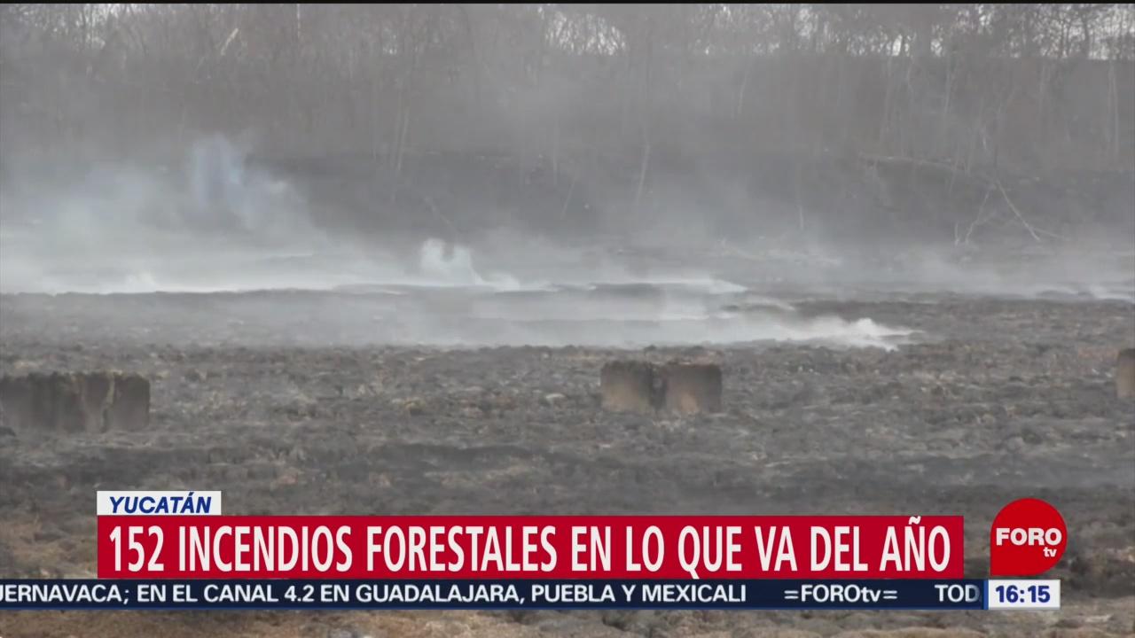 Foto: Temporada Incendios Forestales Yucatán 29 de Marzo 2019