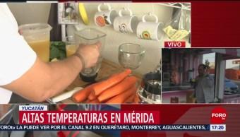 FOTO: Las bebidas para el calor extremo en Yucatán, 16 marzo 2019