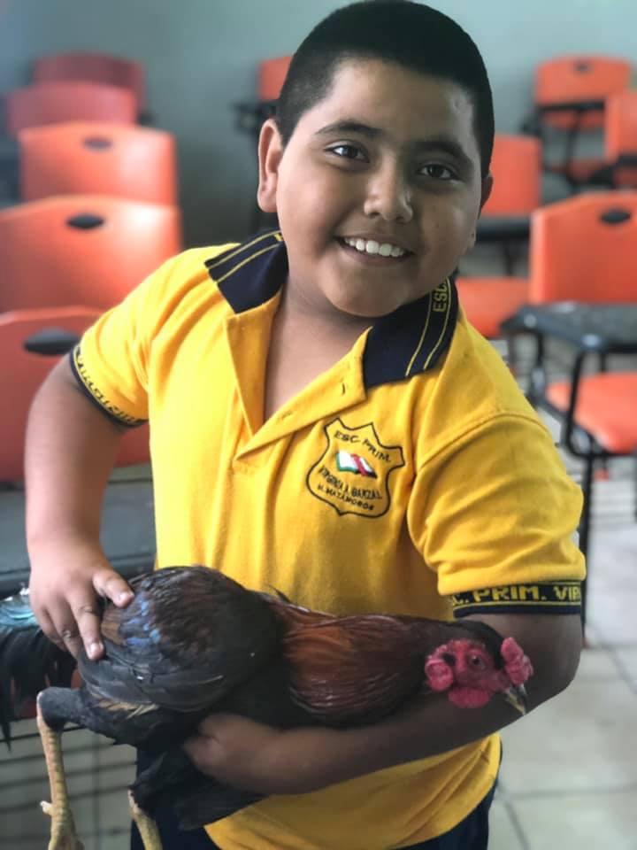 foto niño regala gallo a maestra viral facebook 3