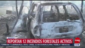 Foto: Oaxaca Registra Incendios Forestales Activos 29 de Marzo 2019