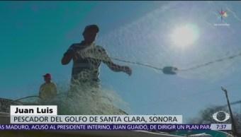Foto: Pescadores del Alto Golfo de California rompen veda